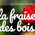 Un gite à Namur ? La fraise des bois.